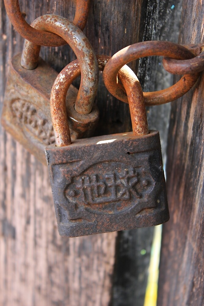 Padlock on a Door by rhamm