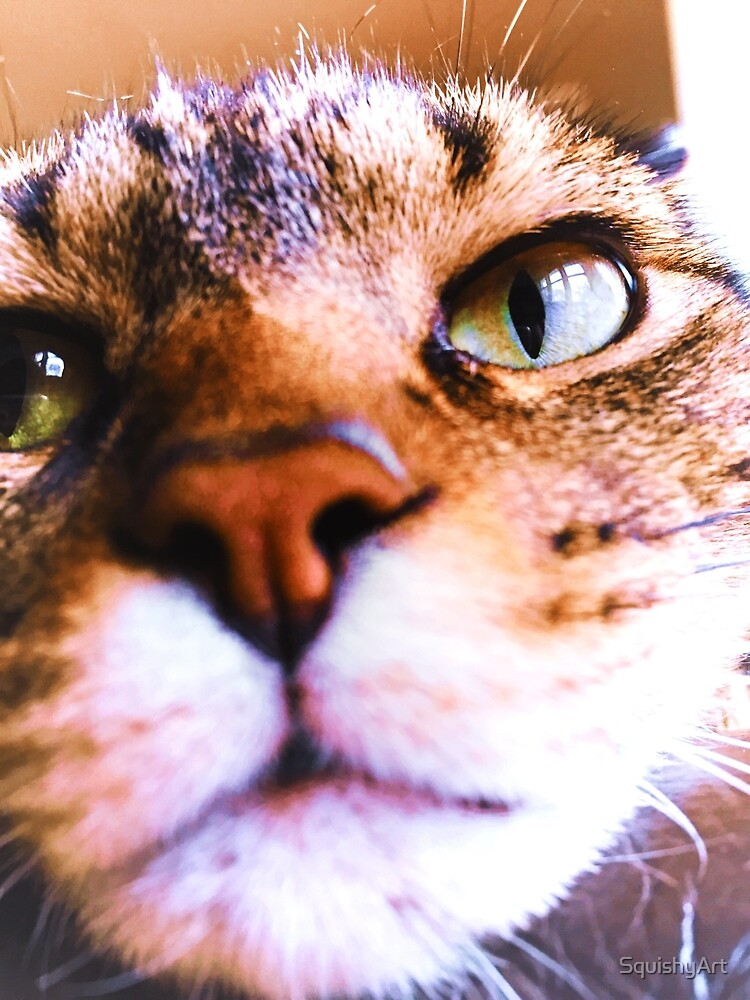 Cat Photo by SquishyArt