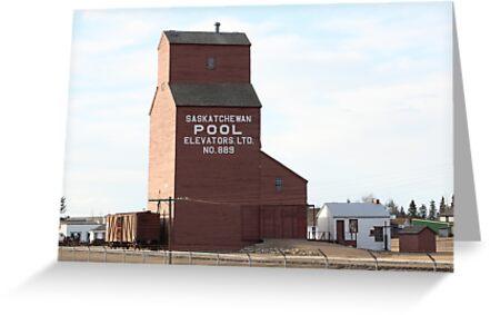 A Timeless Prairie Giant by Leslie van de Ligt