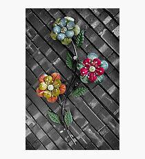 Wall Flowers on Gray Brick Photographic Print