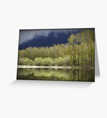 Trees of Spring Greeting Card