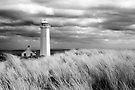 Walney Island Lighthouse by SteveMG