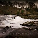 Cenarth Waterfalls by Julie-anne Cooke Photography