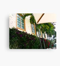Purple and Red Bougainvillea Art Canvas Print