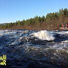 Norrbotten, Rivers .Sweden . Anno Domini 2017. ©Dr.Andrzej Goszcz.  by © Andrzej Goszcz,M.D. Ph.D