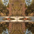 Dreamland - Magnolia Plantation and Gardens by JHRphotoART