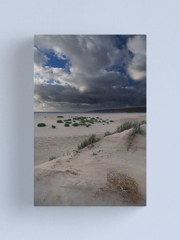 Alternate view of Tumble Weed Canvas Print