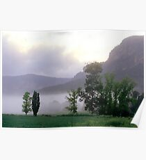 Morning Mist - Glen Davis, Blue Mountains NSW  Poster