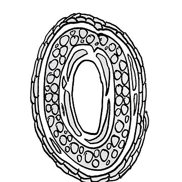 Upper case black and white alphabet Letter O by HEVIFineart