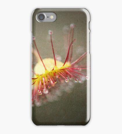 Climbing Sundew iPhone Case/Skin