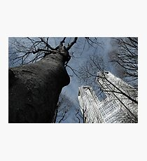 The Two Towers (Mordor and Isengard ;P) Photographic Print