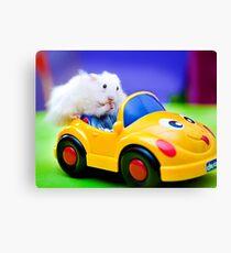 driving hamster Canvas Print