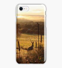 Morning Glory iPhone Case/Skin