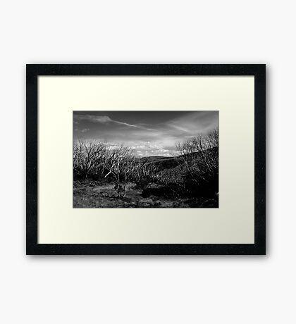 Mt Hotham Framed Print
