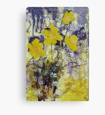 Daffodil time Canvas Print