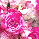 Roses Collection Watercolour by bywhacky
