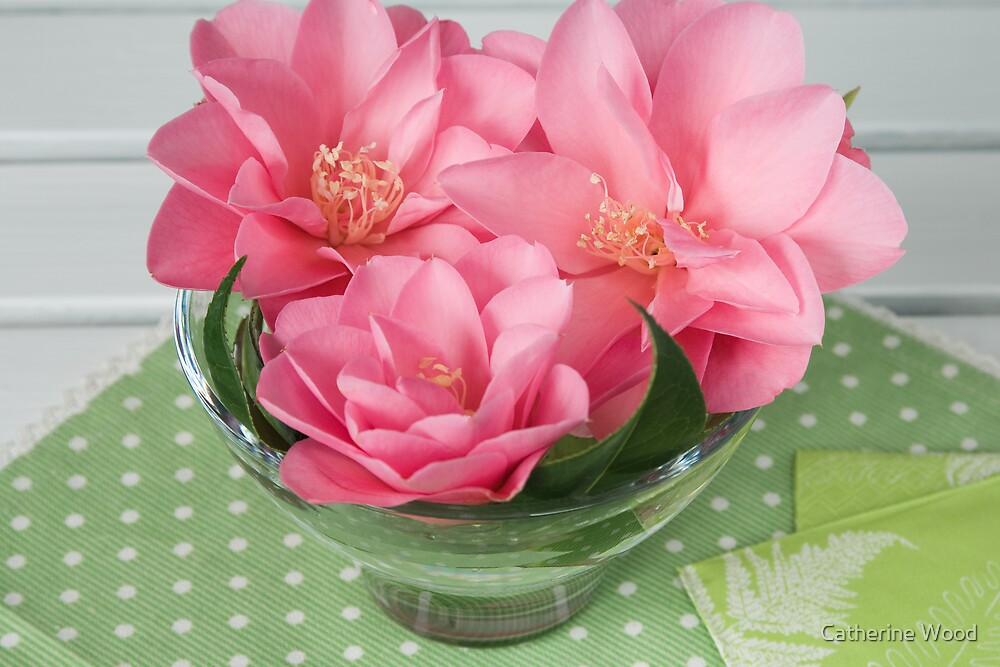 Camellia Daintiness by Catherine Wood