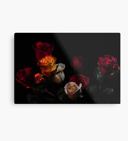 all kinds of roses Metal Print