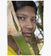 Village Beauty Behind Green Bamboo Poster