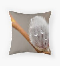 Pussy-Willow Throw Pillow