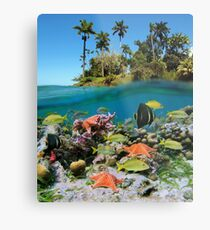 Tropical island and colorful underwater marin life Metal Print