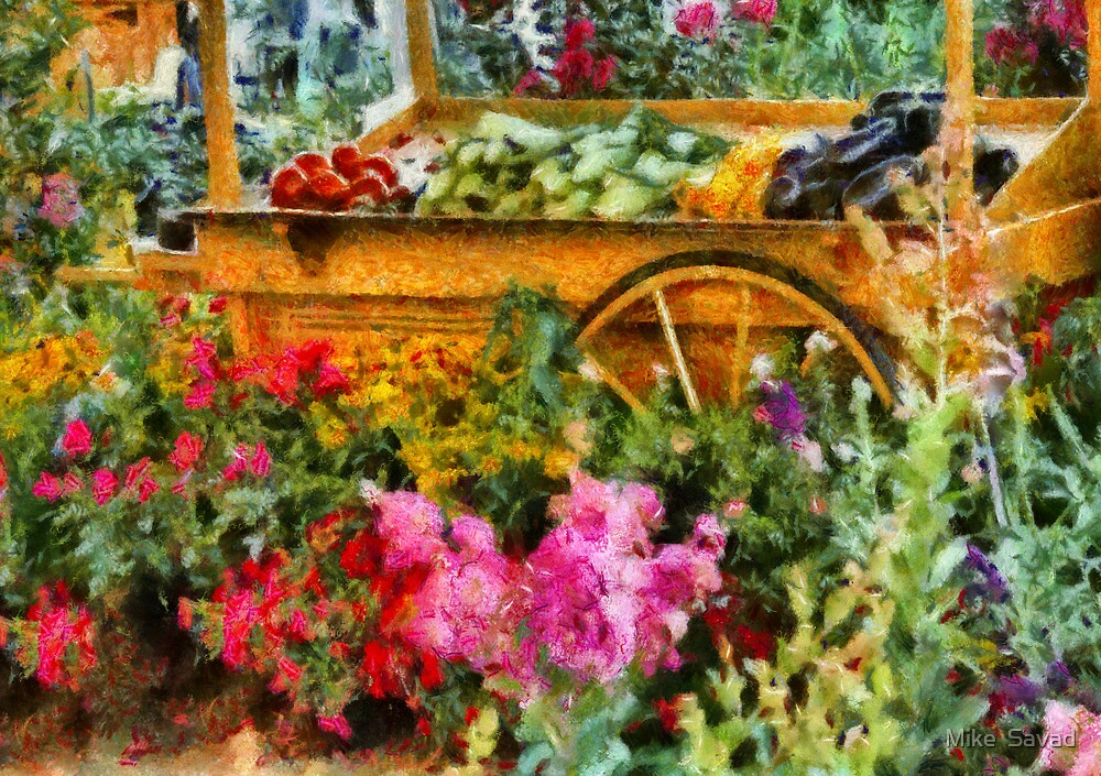 Country - At the farmers market by Mike  Savad