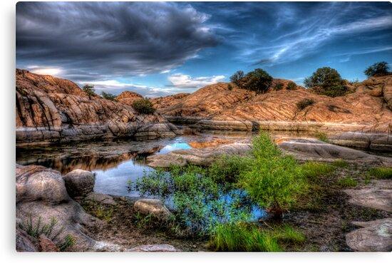 Spring Cove by Bob Larson