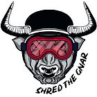 Shred the Gnar! by Cristina Ion