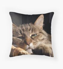 Momma Kitty in her Basket Throw Pillow
