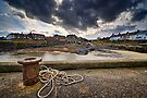 Craster Harbour - Northumberland Coast by David Lewins