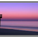 Edisto Island Beach Fishing Pier Sunrise, SC by Jaime Hernandez
