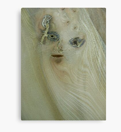 the girl in the wood (resemblance) Metal Print