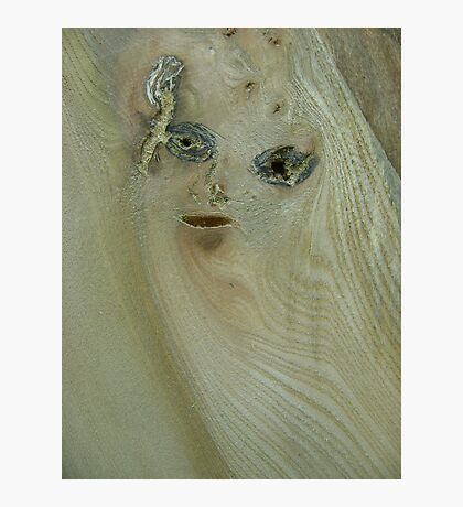 the girl in the wood (resemblance) Photographic Print
