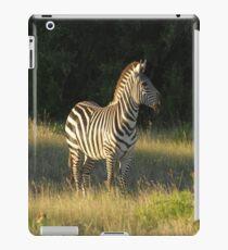 Grasslands Zebra iPad Case/Skin