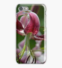 Star Gazer Lily Close Up iPhone Case/Skin
