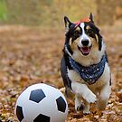 Four-legged Soccer Player by WorldDesign