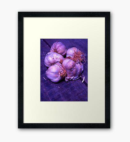 Stinking Roses Framed Print