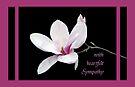 Magnolia Sympathy Card by MarjorieB