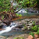 Tully Gorge - Far North Queensland by Paul Davis
