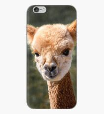 Alpaca, Alpaca Iphone XS Max Case, Alpaca Iphone XR Case, Alpaca T shirt, Alpaca shirt, Alpaca Wall Art,  iPhone Case