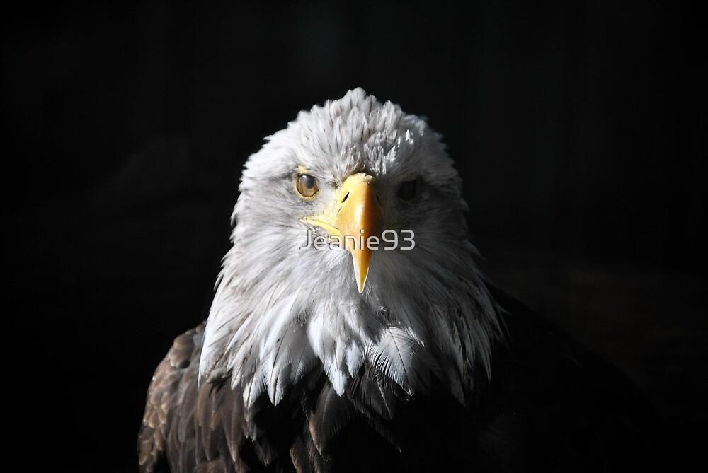 Sam Eagle 4 by Jeanie93