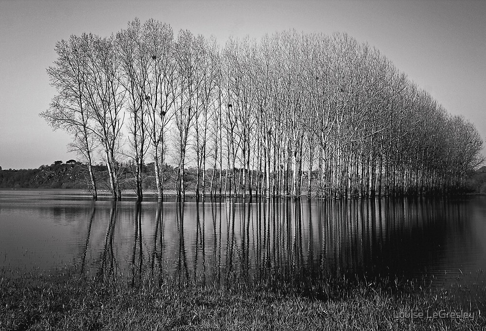 _ early morning _ by Louise LeGresley