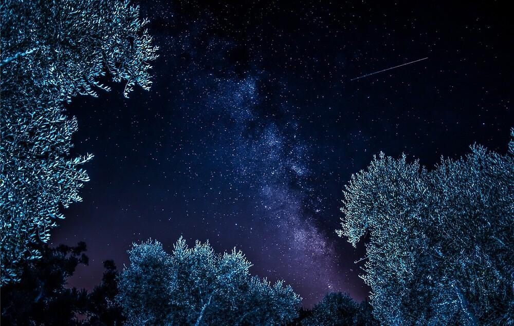 Milky Way under Salento's sky by Alefloyd