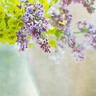 Lovely Lilacs by Rebecca Cozart