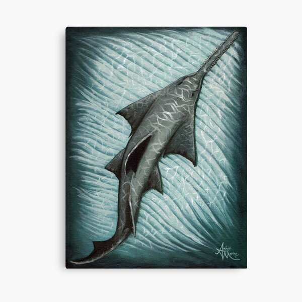"""Sawfish"" by Amber Marine ~ Acrylic painting, art © 2015 Canvas Print"