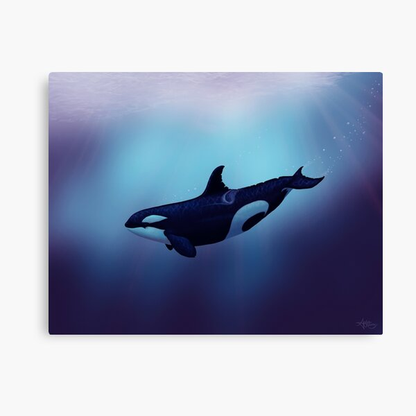 """Lost in Fantasy"" by Amber Marine ~ orca / killer whale art, © 2015 Canvas Print"