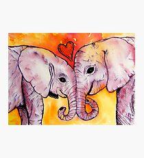 Elephants in Love Photographic Print