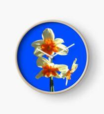 Narzissen-Trio auf Royal Blue Background Uhr
