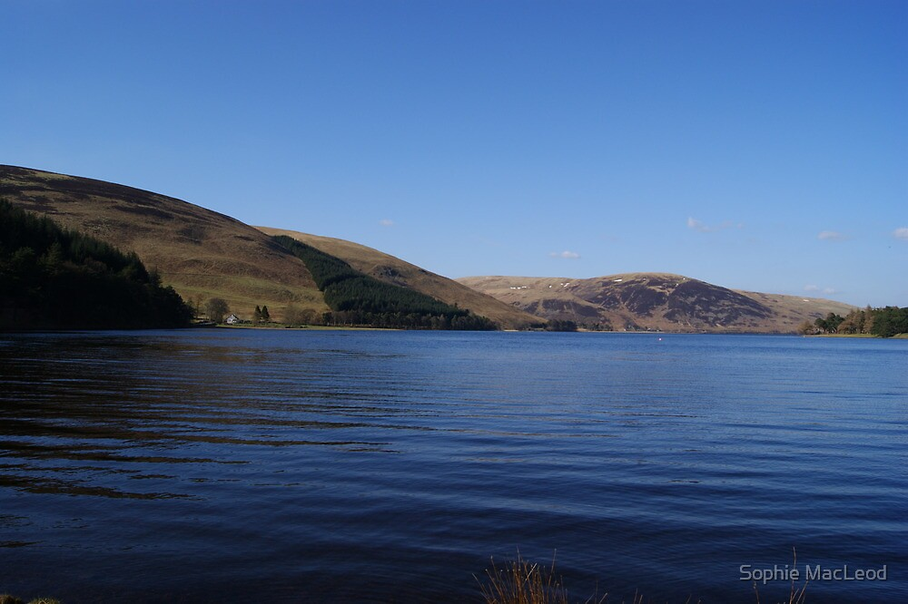 St Mary's Loch - nr Peebles by Sophie MacLeod