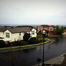 a wet day.....04.11.10 by litzlimgo